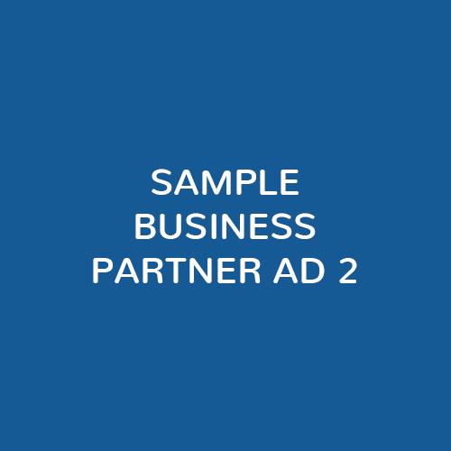 Biz-Partner-Ad2